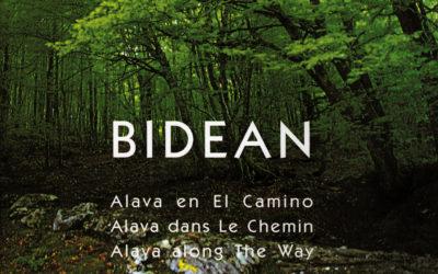 bidean (Fernando Bartolomé y Javier Argote)